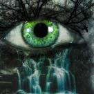 TOPOGRAFIA LACRIMILOR: Lacrimile privite la microscop dezvaluie lucruri uimitoare