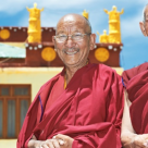 Metoda tibetana de albire a dintilor!