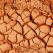 Argila - mineralul tamaduitor