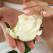 Flori si dragoste de Ziua Indragostitilor