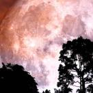 Super Luna Zăpezii de pe 19 februarie are un rol purificator: Este momentul curățeniei emoționale!