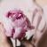 Spune-mi ce zodie ești ca să-ți spun ce floare ți se potrivește