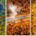 Toamna văzută din Dronă: Fotografii aeriane cu peisaje de TOAMNĂ care îți taie respirația