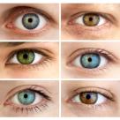 STIINTA DEMONSTREAZA: Ochii sunt OGLINDA SUFLETULUI
