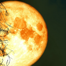 Luna plină a Recoltei de pe 2 septembrie: începe sezonul norocului și al schimbarii!