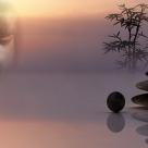 Cele 5 energii Buddha: Din ce familie energetica faci parte?