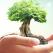 Rugaciune puternica pentru a aduce Abundenta, Miracolele si Succesul in viata ta