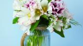 Flori parfumate, flori minunate