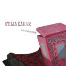 Picturi superbe ale artistei Otilia Cadar