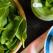 Dieta cu spanac: cum sa slabesti 5 kg in 5 zile