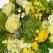 Noua colectie Greenery, manifestul Floria pentru natura, viata, prospetime