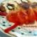 Omleta cu rosii si ardei gras