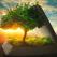60 de Sfaturi, Vorbe înțelepte și Proverbe Albaneze care îți vor face viața mai bună și Destinul mai blând