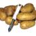 Cartofi sub forma de gogosi