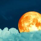 12.11 - Moment de Luna plina in Taur: se deschid portile abundentei si ni se indeplinesc cele mai ascunse dorinte!