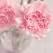 Urari de Florii: cele mai frumoase mesaje pentru sarbatori
