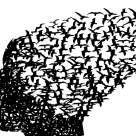 DOVEZI STIINTIFICE: Vindecarea sta in gandurile noastre subconstiente!