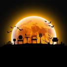 """De Halloween """"decorează-ți"""" casa cu SensoDays.ro"""