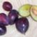 Gombotii cu prune BISTRITENE