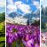 Romania, esti tare frumoasa! Imagini de Primavara care ne demonstreaza in ce colt de Rai traim
