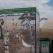 Scut în calea deșeurilor - campanie de stopare a fenomenului deșeurilor aruncate la întâmplare pe plaje și în Mare