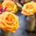 Floria in Strada - floraria destinatie pentru flori si cadouri create de artisti locali