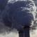 Eșecul autorităților române de a sancționa poluatorii din industria energetică, sesizat Comisiei Europene