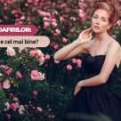Testul Trandafirilor: Ce citat te descrie cel mai bine?