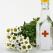 Top 3 ceaiuri traditionale romanesti pentru zona genitala
