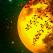 15 August - Luna plina in Varsator este o luna a Karmei colective: Avem de invatat lectia Empatiei si a Iubirii!