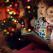 Cărți pentru copii cu povești magice de sărbători
