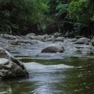 Succes al activistilor in 2017: Cum a fost salvat Raul Jiu de la distrugere