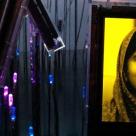 Malala Yousafzai – Premiul Nobel 2014: 12 citate inspirationale