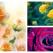 Trandafirii, flori mult iubite. 10 curiozități fascinante din lumea trandafirilor