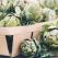 Plante care pot contribui la reglarea tensiunii arteriale