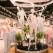 Penti inaugurează cel mai mare magazin din România la Shopping City Timișoara