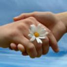 Mainile femeilor gazduiesc mai multe bacterii decat mainile barbatilor
