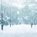 Nouăsprezece citate minunate despre zăpadă