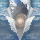 Mesaje din lumea ingerilor si semnificatia culorilor divine