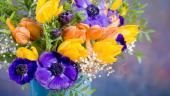 Aranjament floral cu lalele si anemone