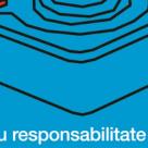 O altfel de piesa: Piesa cu responsabilitate limitata