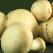 Beneficiile consumului de ciuperci