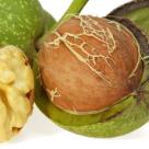 Nucile verzi: Descopera-le beneficiile extraordinare!