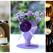 Proiecte pentru acasa: 15 Idei Inteligente de a realiza obiecte creative din Materiale Reciclabile