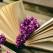 Carti de succes pentru o noua perspectiva asupra vietii