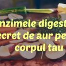 Enzimele digestive: Secret de aur pentru corpul tau