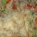 Salata asiatica