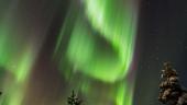 Peisaj de iarna cu aurora boreala