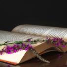 5 carti de succes ale scriitorilor romani contemporani