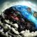 Dalai Lama despre SCHIMBĂRILE CLIMATICE: 14+ citate puternice - \'Pământul este Mama Noastră\'